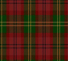 01270 Ferris Oxide Fashion Tartan Fabric Print Iphone Case by Detnecs2013