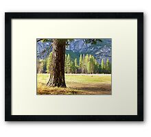 Walled round with rocks as an inland island; here are the walls of Yosemite Valley Framed Print