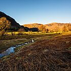 Borrowdale (Bathed in Sunlight) by David Lewins LRPS