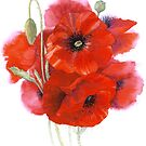 Poppy posy by Jacki Stokes