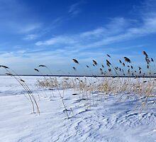 winter beach by mrivserg