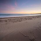 Wind Swept Beach Sunrise by fotosic