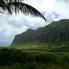 Kualoa Ranch - Oahu, HI by DrStantzJr