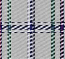 01285 Houston Squares Fashion Tartan Fabric Print Iphone Case by Detnecs2013