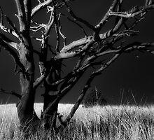 Naked 2 by Bob Larson