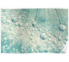 Dandy Rain Poster