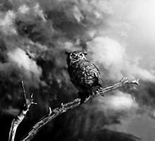 Coming Storm - Black/White by Patrick Kavanagh