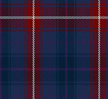 01298 United Scots American Fashion Tartan Fabric Print Iphone Case by Detnecs2013