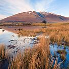 Blencathra from Tewet Tarn by Greg Artis