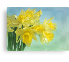 spring cheerfulness Canvas Print