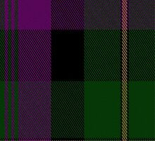 01314 Urbino Fashion Tartan Fabric Print Iphone Case by Detnecs2013