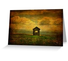 Field of Dandelions Greeting Card