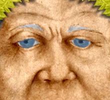 Senator Spurius Sticker