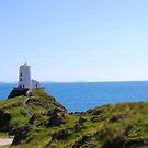 Light House, Wales by Tardy