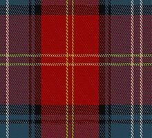 01351 Caledon Tartan Fabric Print Iphone Case by Detnecs2013
