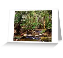 Fern Glade at Russell Falls Greeting Card