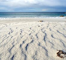 Taylors Beach - Bay of Fires - Tasmania by Anthony Davey