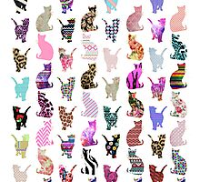 Girly Whimsical Cats aztec floral stripes pattern Photographic Print