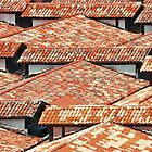 ROOF TOPS VENICE ITALY by Thomas Barker