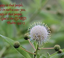 Happy is That People Whose God is the LORD! by aprilann