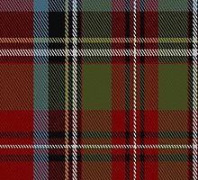 01376 States of Carolina District Tartan Fabric Print Iphone Case by Detnecs2013