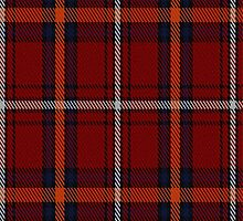 01380 Castle Stewart District Tartan Fabric Print Iphone Case by Detnecs2013