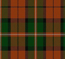 01385 Celtic Combat Tartan Fabric Print Iphone Case by Detnecs2013