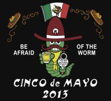 Cinco de Mayo 2013 by HolidayT-Shirts