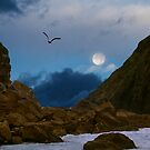 Coastal Moods Moonglo by Diane Schuster