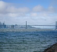San Francisco Bay by David Denny