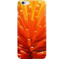 Hot Poker Up Close iPhone Case/Skin