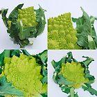 Green Romanescos by jojobob