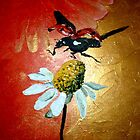 Ladybird Landing on Daisy by Cherie Roe Dirksen