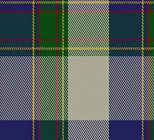 01419 Cornell Fashion Tartan Fabric Print Iphone Case by Detnecs2013