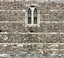 Windsor Castle Wall Detail by kirilart