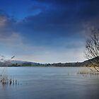 Llangorse lake - 01 by Paul Croxford