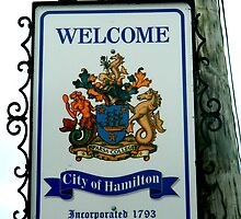 Welcome to Hamilton by kchase