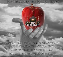 ✌☮ Israel The Apple Of God's Eye ✌☮  by ╰⊰✿ℒᵒᶹᵉ Bonita✿⊱╮ Lalonde✿⊱╮
