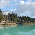 Lago di Barcis by jojobob