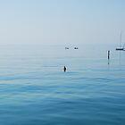 Lake Garda, Italy by jojobob