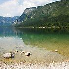 Lake Bohinj Shore in Slovenia by jojobob