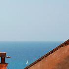 Roof Overlooking Sea by jojobob