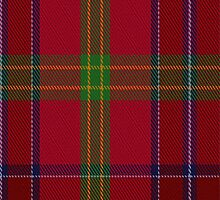 01467 Telfer Tartan Fabric Print Iphone Case by Detnecs2013