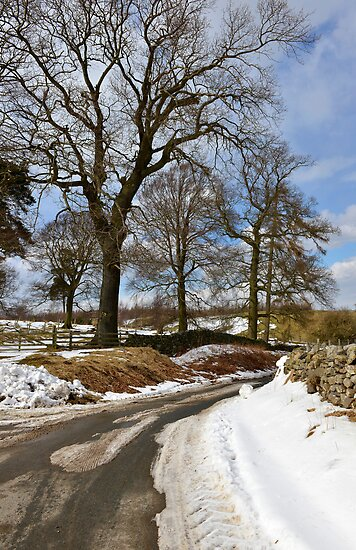 Winter still clings on by John (Mike)  Dobson