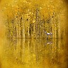 Aspen Woods by Diane Schuster