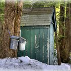Two Taps and an Outhouse by Monica M. Scanlan