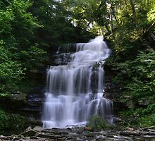 Hot August Relief Below Ganoga Falls by Gene Walls