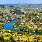 Banks of the Douro river, Portugal by Michael Abid