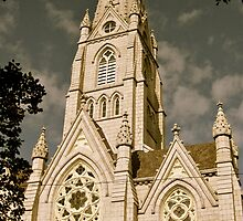 St. Mary's Cathedral Basilica by Tracey McQuain