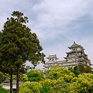 Castle at Hiimeji With Trees, Kansai, Japan by jojobob
